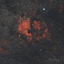 Nebulosa Nord America,                                Andrea Losi