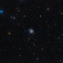 M101 Pinwheel Galaxy,                                Kamil Fiedosiuk