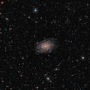 NGC 6744,                                Steve de Lisle