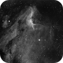 IC 5070 Pelican Nebula,                                Tullio Di Primio