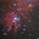 cone nebula / ngc 2264,                                noodle
