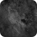 Nebulousness in IC1318,                                Greg Watkins