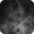 Tarantula Nebula H-alpha,                                Matthew