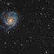 NGC 5474 - Dwarf Galaxy in Ursa Major,                                Damien Cannane