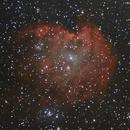 NGC 2174 - Nebulosa de la Cabeza de Mono,                                Luis Martinez
