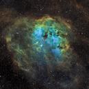 Nebulosa de los Renacuajos - Tadpole Nebula - IC410,                                Bror Federico Ced...