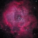 Rosette Nebula,                                Pete Bouras