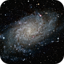 Triangulum Galaxy (M33),                                Frank Kane