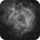 Rosette Nebula H alpha,                                Apprenti