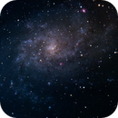 M33,                                Joel Brewer