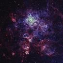 NGC 2070 HOO,                                RolfW