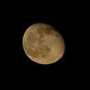 Mond 2016-03-26,                                Bruno