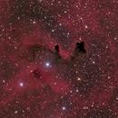 Sandqvist 111, dark nebula in Vela,                                José Joaquín Pérez