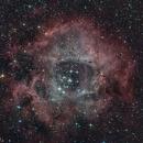 NGC 2244 in Rosette Nebula,                                Günther Dick