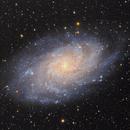 Galassia del Triangolo,                                Elio - fotodistelle.it