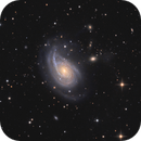 NGC772,                                tommy_nawratil