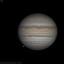 Jupiter   2019-07-07 5:33   Color,                                Chappel Astro