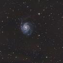 M101 - Pinwheel Galaxy,                                marcsphotography