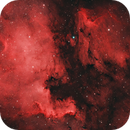 NGC7000 & IC5070 - The North American and Pelican Nebula,                                Florian @ ClearSkyMarket