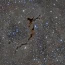 Barnard 150 The Seahorse Nebula,                                Greg Nelson