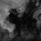 Darkness in the North America Nebula,                                Richard Sweeney