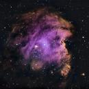 Nébuleuse de la tête de singe (NGC 2174),                                Julien Bourdette