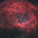 Sh2-261 - Lowers Nebula,                                Jens Zippel