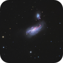 ARP 269 (NGC4490 Cocoon Galaxy and NGC4485),                                Rolf Dietrich