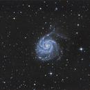 M101 Pinwheel Galaxy,                                Andrea Pistocchini - pisto92