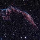 Network Nebula (NGC6992 - NGC6995),                                marcosal72