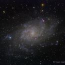 M33 / NGC 598 / Triangulum Galaxy,                                Ron Bokleman