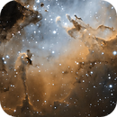 M16 - Eagle Nebula (Core in SHO),                                Ruediger