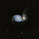 M51 - Whirlpool Galaxy,                                Rhett Herring