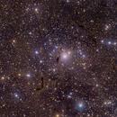Bright and Dark Nebulae in Casssiopeia,                                Giovanni Benintende