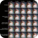 Deep Sky Stacker - Stacking Methods vs. Number of Lights - M43,                                Steve Ludwig