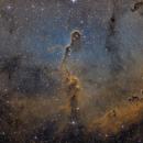 IC 1396a elephant trunk SHO,                                Lukas_TW