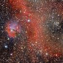 IC2177 - The Seagull Nebula,                                Alessandro Cavallaro