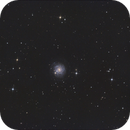 NGC 3344,                                PeterN