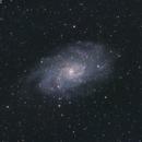 M33,                                Bill Long