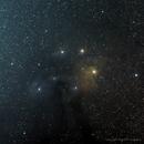 Antares - M4 - Rho Oph. nebula,                                Harold Freckhaus