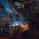 Pelican Nebula in HaSHO,                                Steven Miller