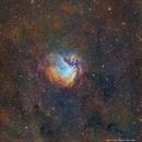 SH2-112 Hubble Palette,                                Eric Coles (coles44)