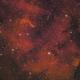SH2-132 The Lion Nebula,                                niteman1946