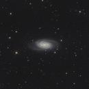 NGC 2903 - NGC 2905,                                Falk Schiel