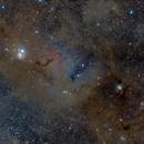 IC348 and NGC1333,                                Hiroling78