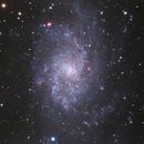 M33, Triangulum Galaxy: Vixen 81s | Atik 314E | AstroDMx Capture for Linux,                                turfpit