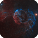 IC 443 - Jellyfish Nebula, IC 444, HoCr-1,                                Chen Wu