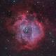 Rosette Nebula (NGC 2237) - LRGB+OIII,                                Yakov Grus