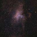 M16 Nébuleuse de l'aigle,                                PascalB