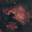 North America Nebula,                                tringuede